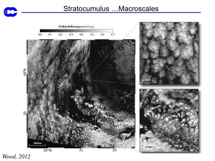 Stratocumulus …Macroscales