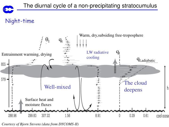 The diurnal cycle of a non-precipitating stratocumulus