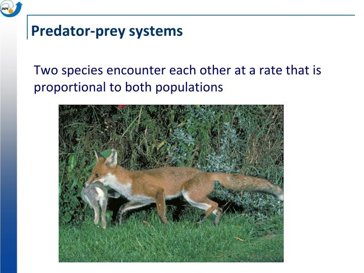 Two species encounter each other at a rate that is proportional to both populations