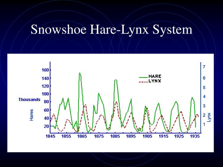 Snowshoe Hare-Lynx System