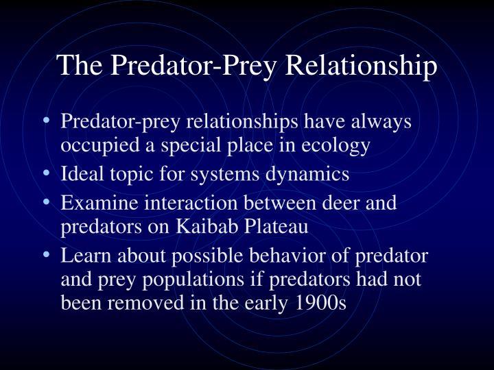 The predator prey relationship