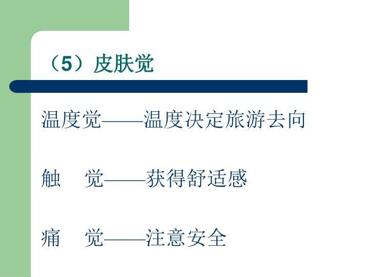 (5)皮肤觉