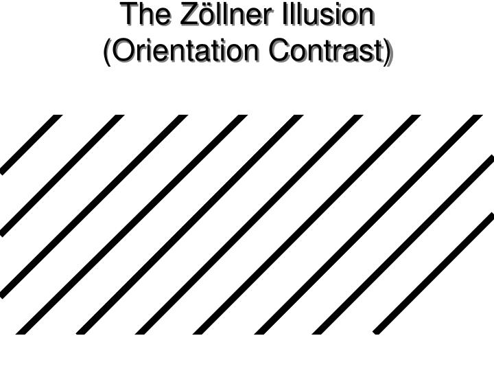 The Zöllner Illusion