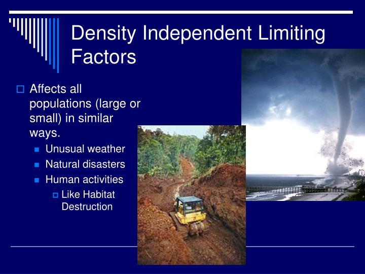 Density Independent Limiting Factors