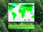 map of the coniferous forest