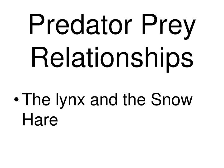 Predator Prey Relationships