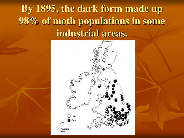 By 1895, the dark form made up 98% of moth populations in some industrial areas.