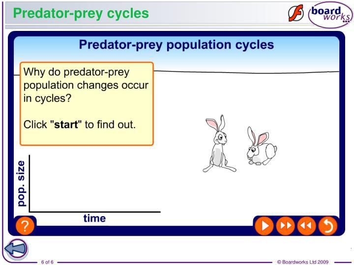 Predator-prey cycles