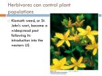 herbivores can control plant populations
