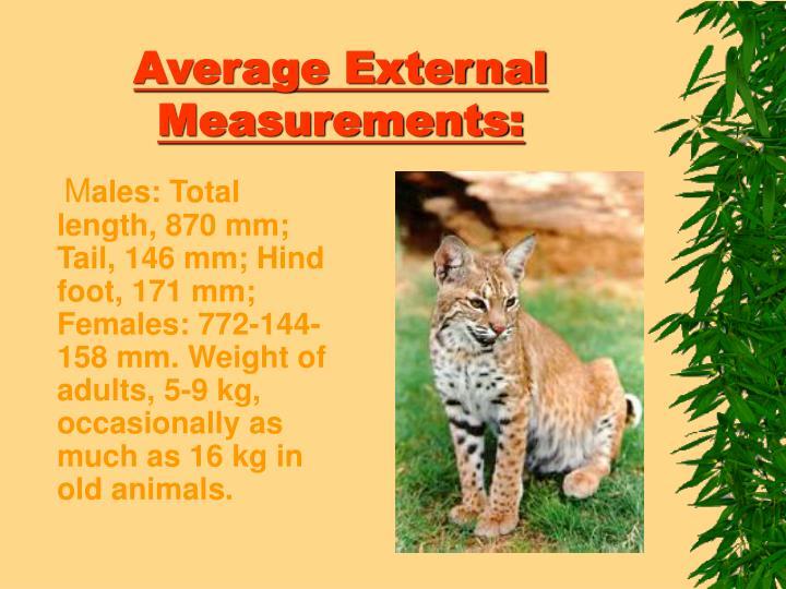 Average external measurements