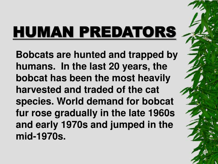 HUMAN PREDATORS