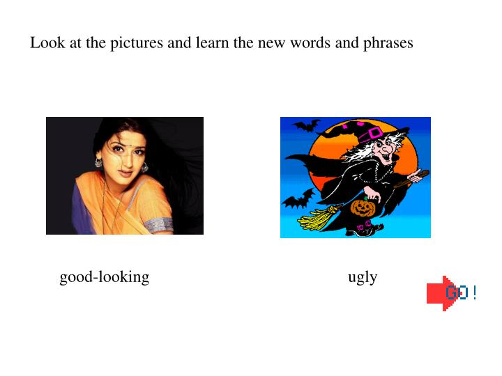 Look at the pictures and learn the new words and phrases