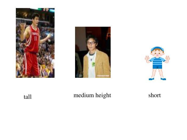 medium height