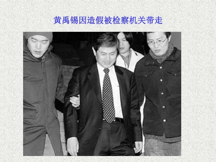 黄禹锡因造假被检察机关带走