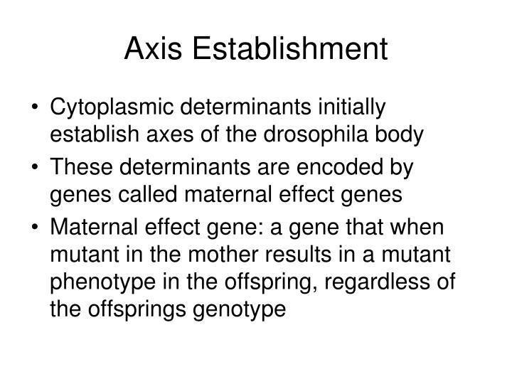 Axis Establishment