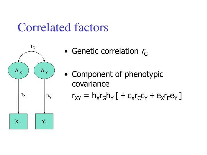 Correlated factors