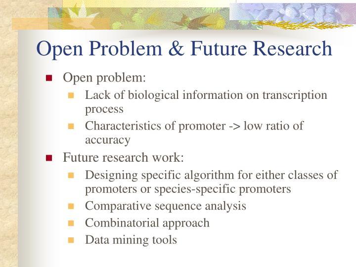 Open Problem & Future Research