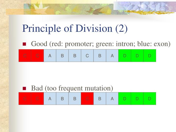 Principle of Division (2)
