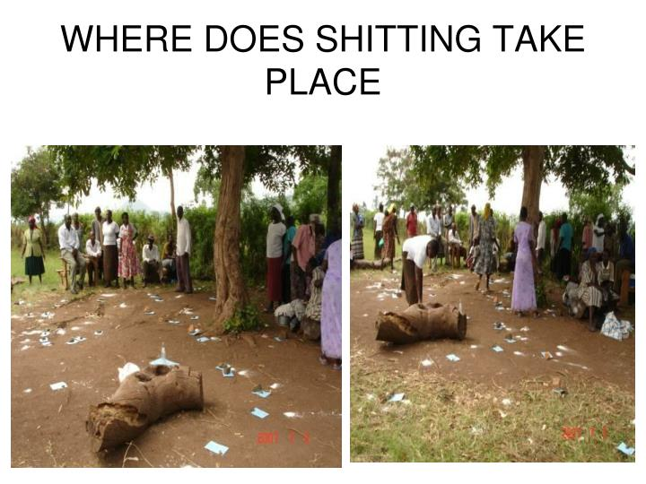 WHERE DOES SHITTING TAKE PLACE
