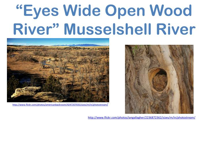 """""""Eyes Wide Open Wood River"""" Musselshell River"""