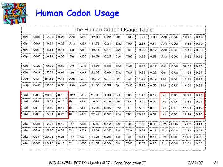 Human Codon Usage