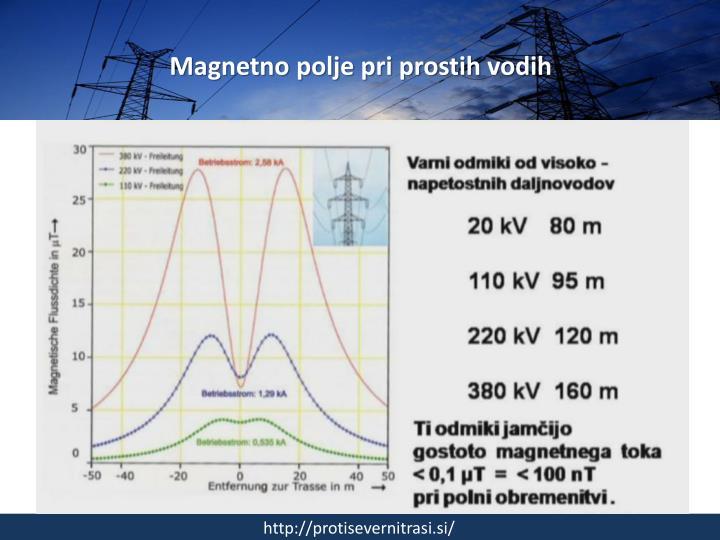 Magnetno polje pri prostih vodih