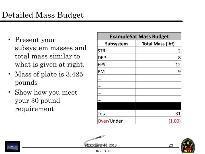 Detailed Mass Budget