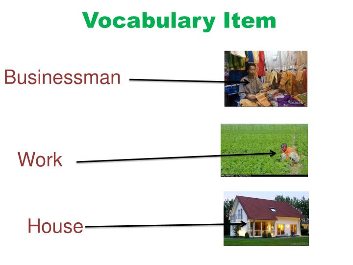 Vocabulary Item