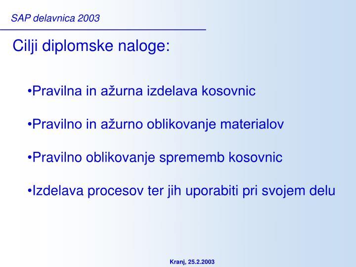 Cilji diplomske naloge