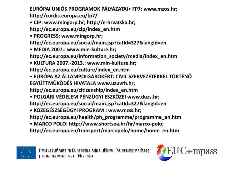 EURÓPAI UNIÓS PROGRAMOK PÁLYÁZATAI