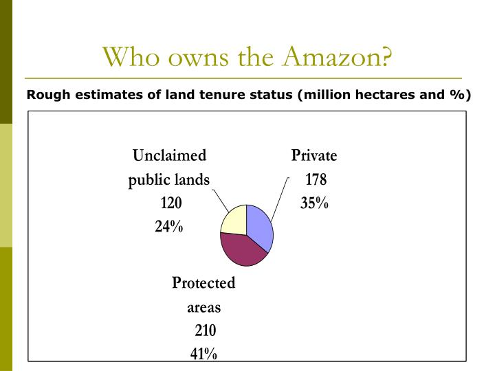 Who owns the Amazon?