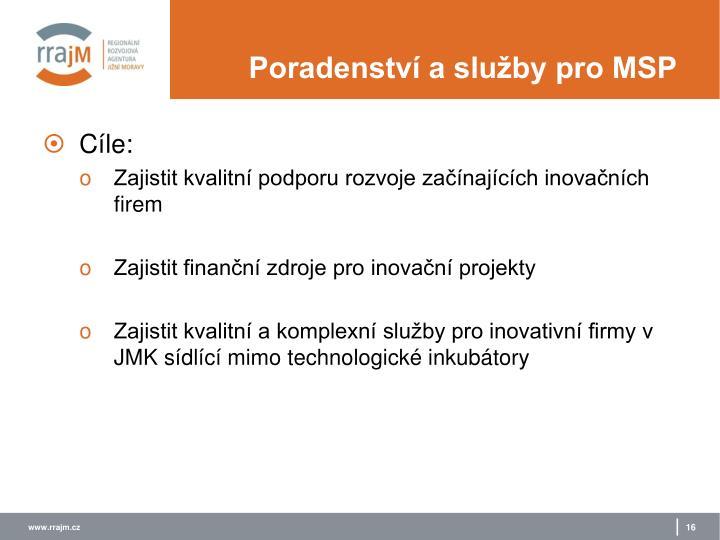Poradenství a služby pro MSP