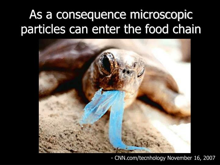 As a consequence microscopic particles can enter the food chain