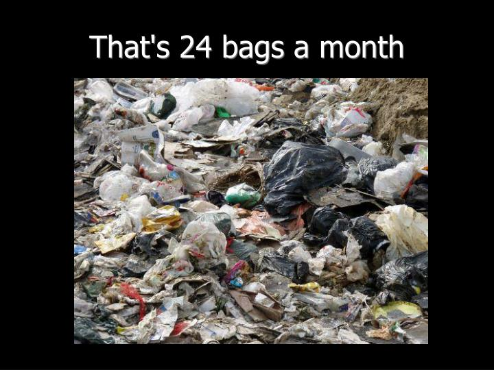 That's 24 bags a month
