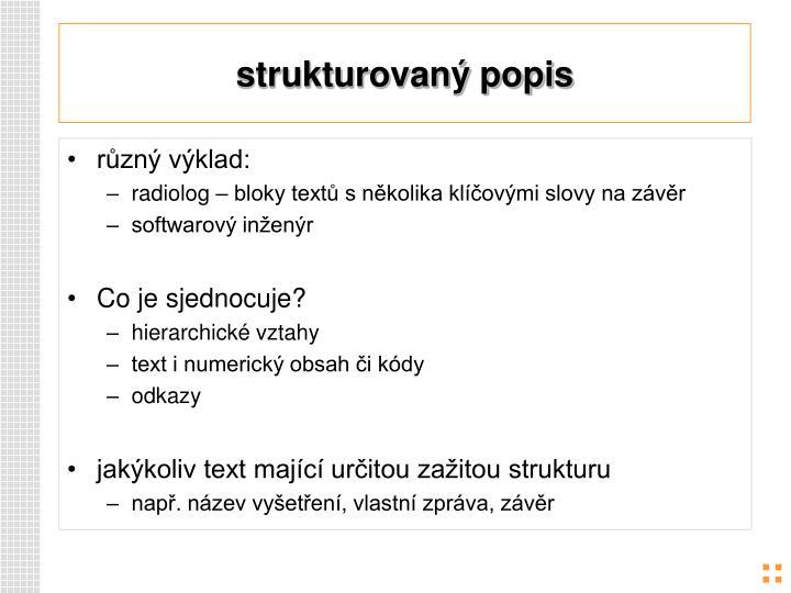 strukturovaný popis