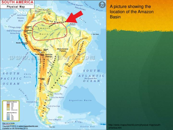 A picture showing the location of the Amazon Basin