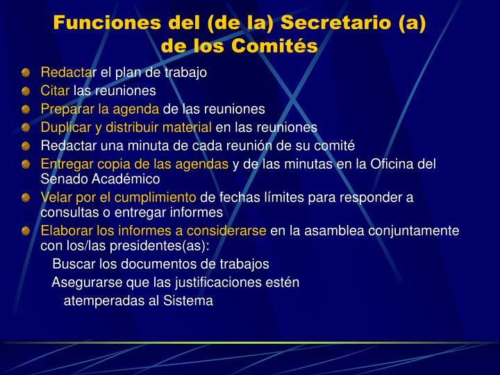 Funciones del (de la) Secretario (a)