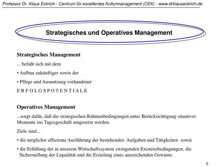 Strategisches und Operatives Management