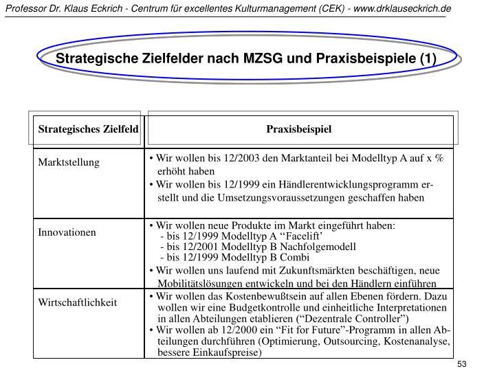 Strategische Zielfelder nach MZSG und Praxisbeispiele (1)