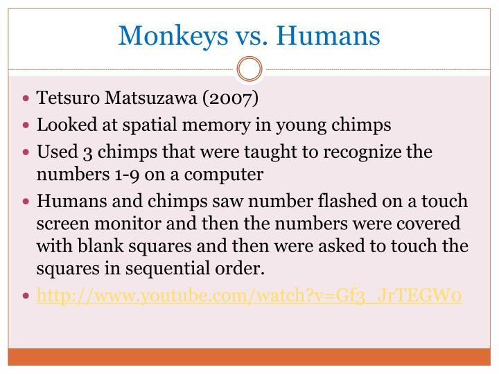 Monkeys vs. Humans