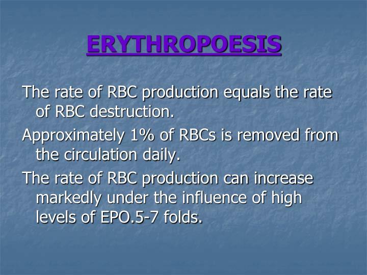 ERYTHROPOESIS