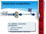 anaerobais metabolisms