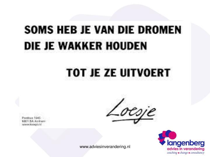 www.adviesinverandering.nl