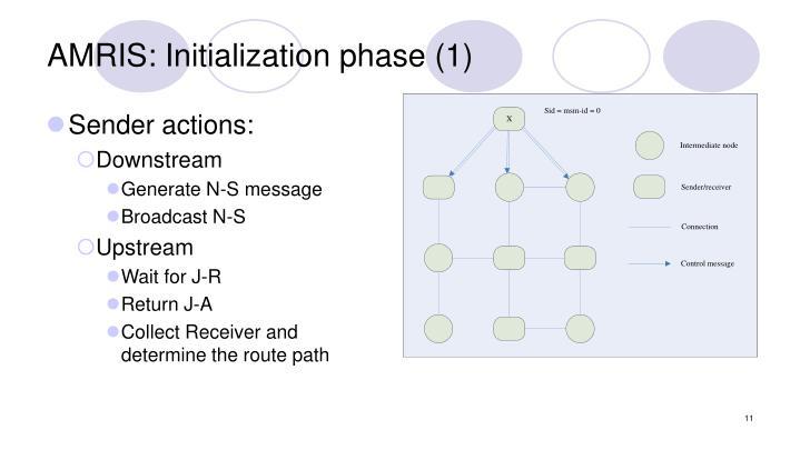 AMRIS: Initialization phase (1)