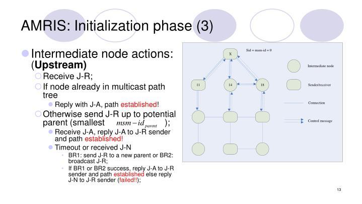 AMRIS: Initialization phase (3)