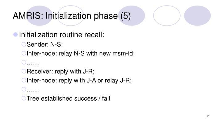 AMRIS: Initialization phase (5)