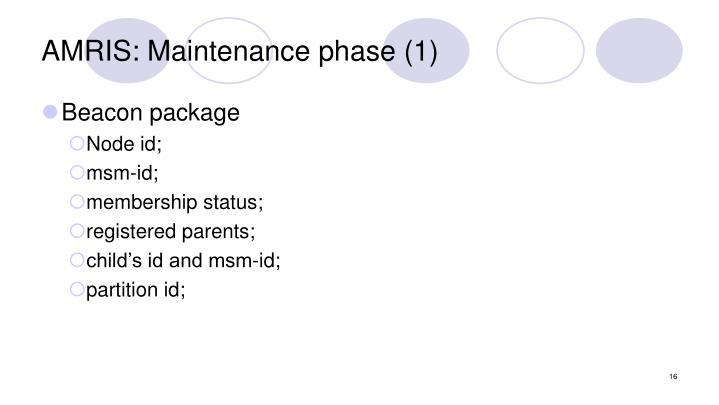AMRIS: Maintenance phase (1)