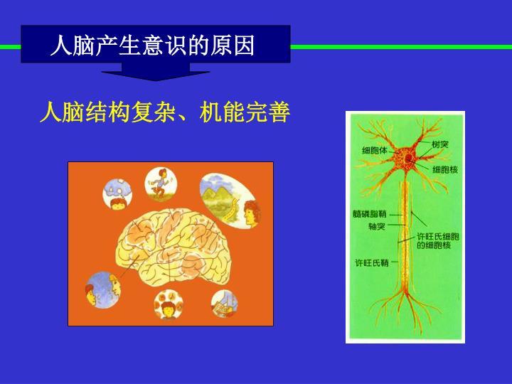 人脑产生意识的原因