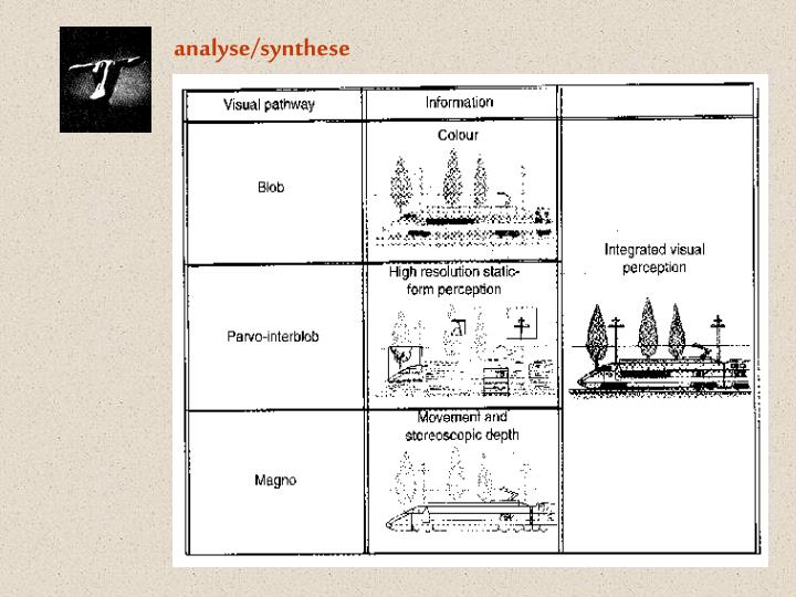 analyse/synthese