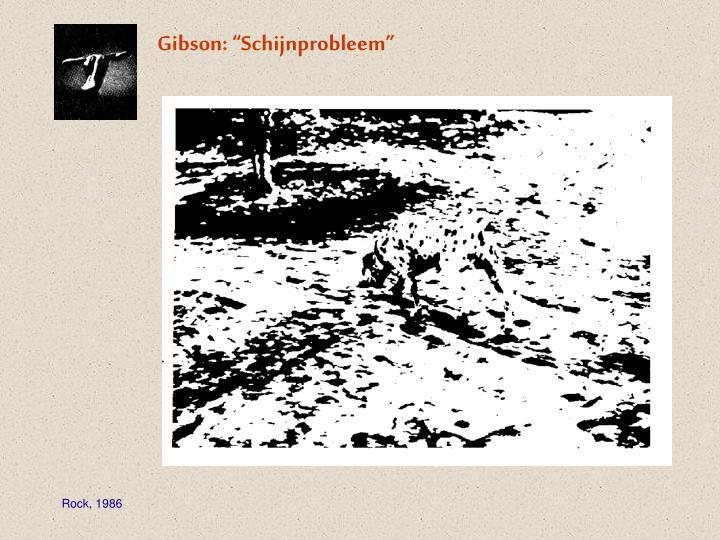 """Gibson: """"Schijnprobleem"""""""